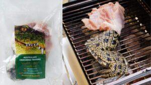 ワニ肉の味は美味しい?まずい?臭い?